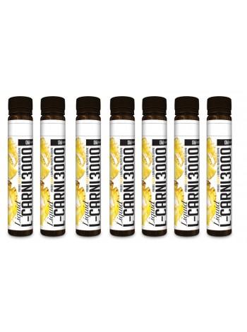 Nutriversum Pure PRO - L-Carnitine Liquid 3000 (20 * 25 мл) упаковка