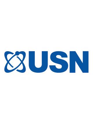 USN (Англия)